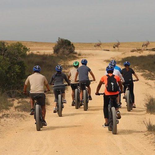 1582535718E-bikes Safari